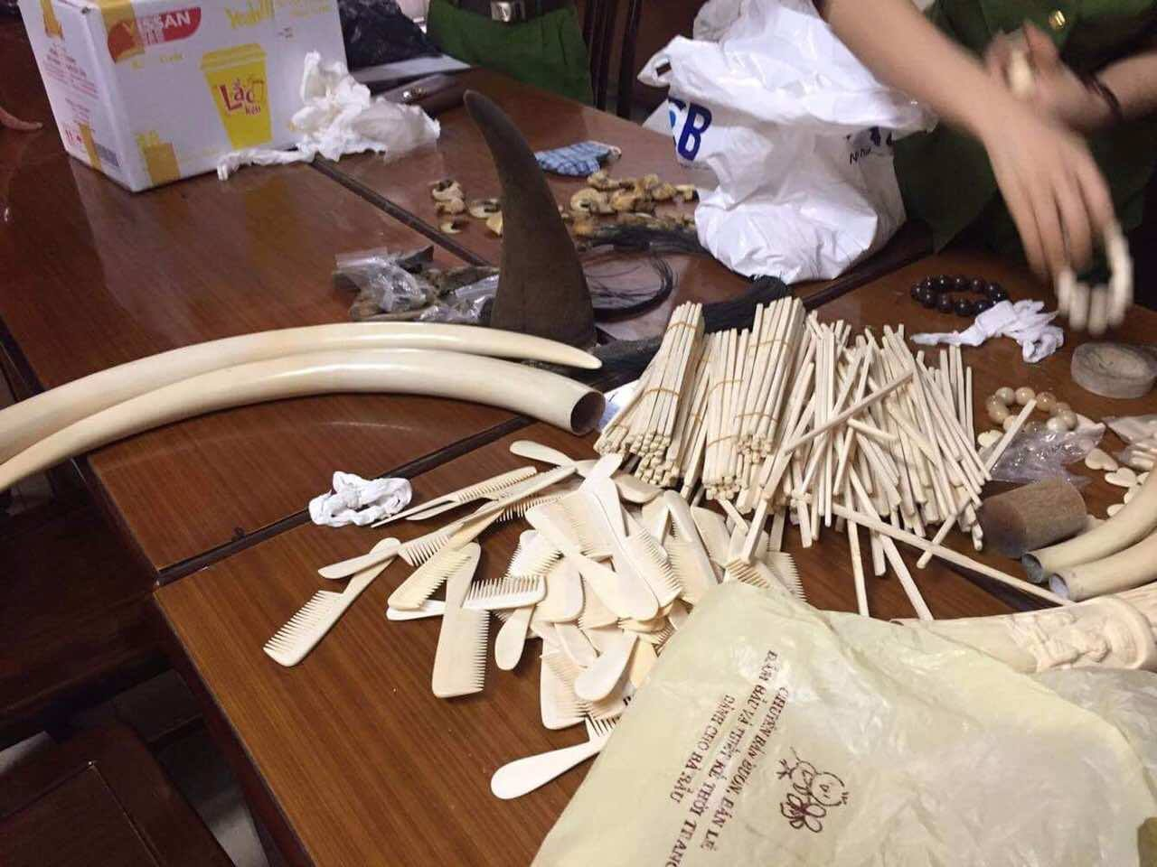 Ivory and other wildlife products recovered in Vietnam wildlife kingpin bust