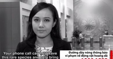 TV news anchor, Hoai Anh promotes the Education for Nature - Vietnam 1800-1522 wildlife crime hotline