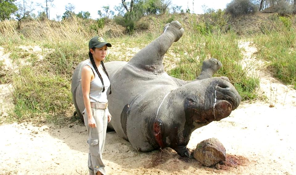 Rhino ambassador Hong Nhung with dead rhino in Kruger National Park, South Africa