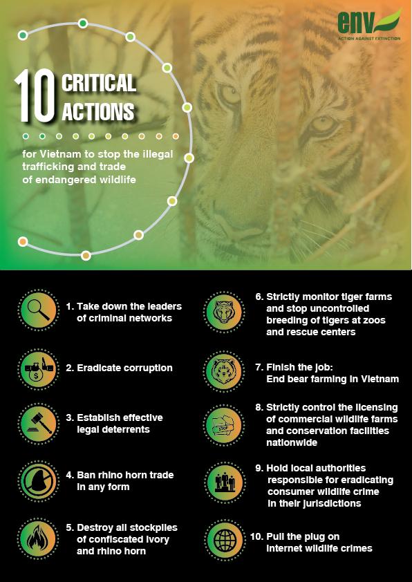 10 steps to beat wildlife crime
